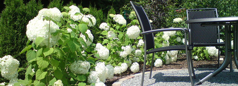 Gartengestaltung pflege g rtnerei schneider gbr for Gartengestaltung dessau